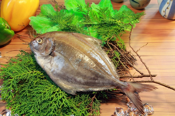 黑鯧魚 1