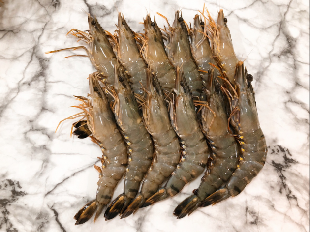 大草蝦 1